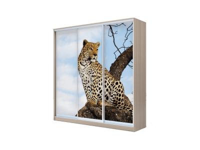 Шкаф-купе Хит 3-х дверный Леопард Ясень шимо светлый