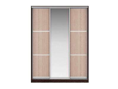 Шкаф-купе Наоми Вариант 6 Фасады Тройной ЛДСП-Зеркало-Тройной ЛДСП