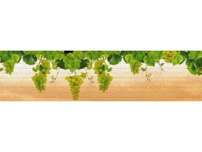 Кухонный фартук Тиснение виноград